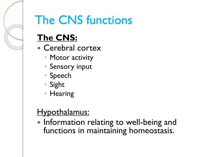 The CNS functions