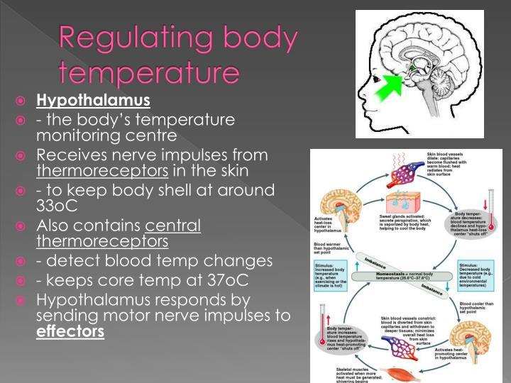 Regulating body temperature