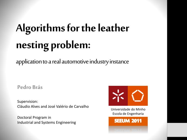 Algorithms for the leather nesting problem: