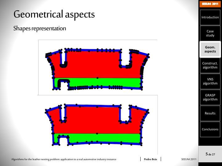 Geometrical aspects