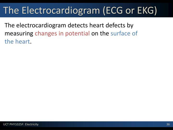 The Electrocardiogram (ECG or EKG)