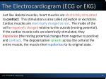 the electrocardiogram ecg or ekg1