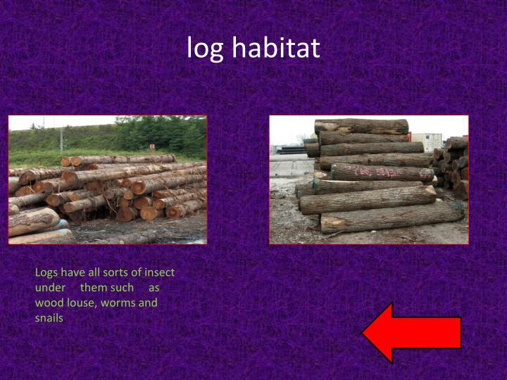 log habitat