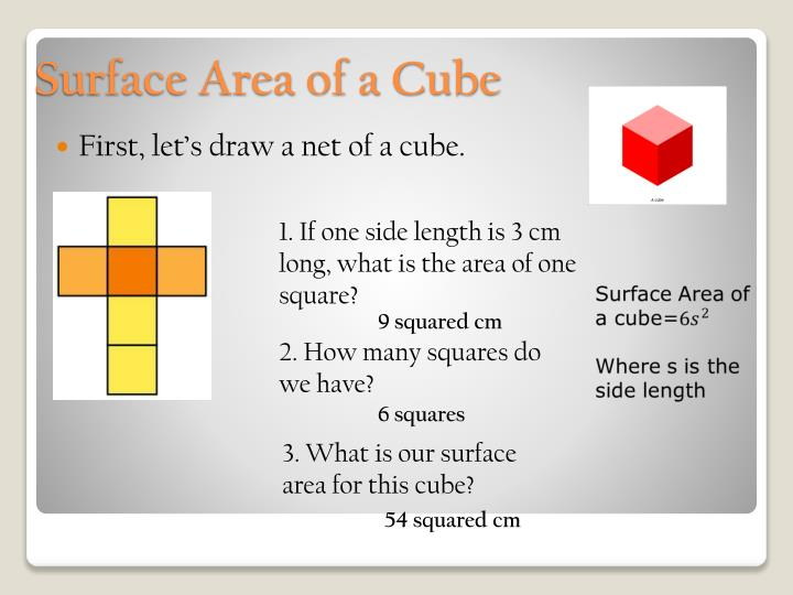 First, let's draw a net of a cube.