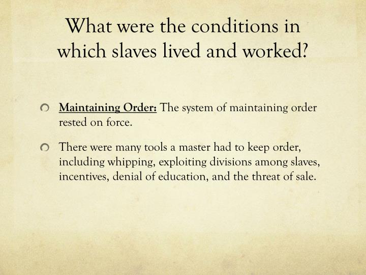What were the conditions in which slaves lived and worked?