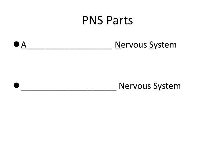 PNS Parts
