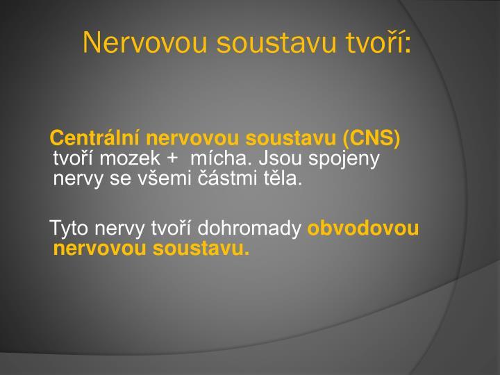 Nervovou soustavu tvoří:
