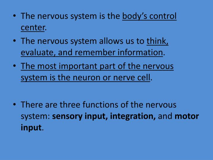 The nervous system is the
