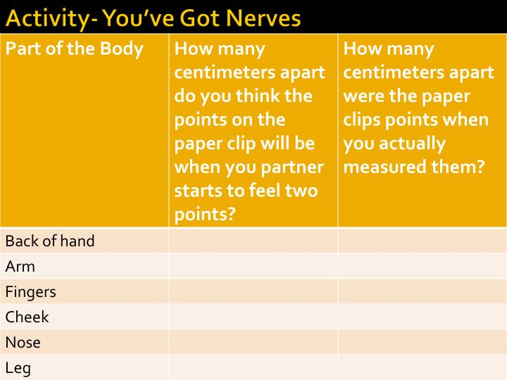 Activity- You've Got Nerves