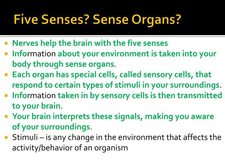 Five Senses? Sense Organs?