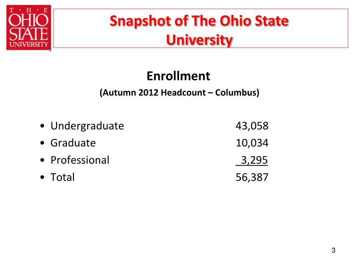Snapshot of The Ohio State University
