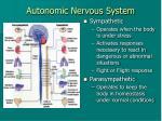 autonomic nervous system1