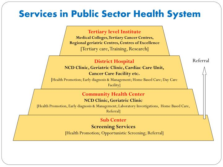 Services in Public Sector Health System