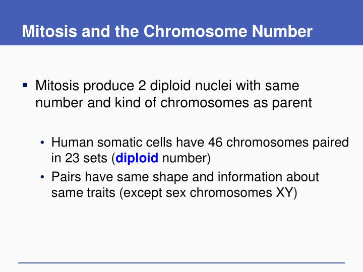 Mitosis and the Chromosome Number