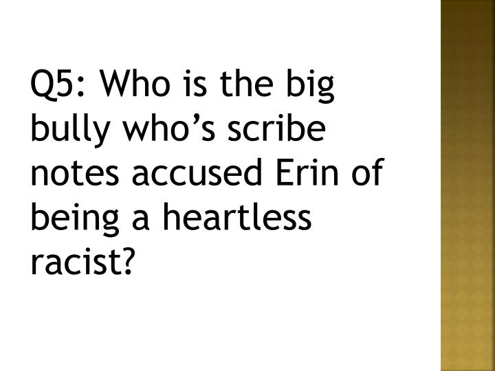 Q5: Who is the big bully who's scribe notes accused Erin of being a heartless racist?