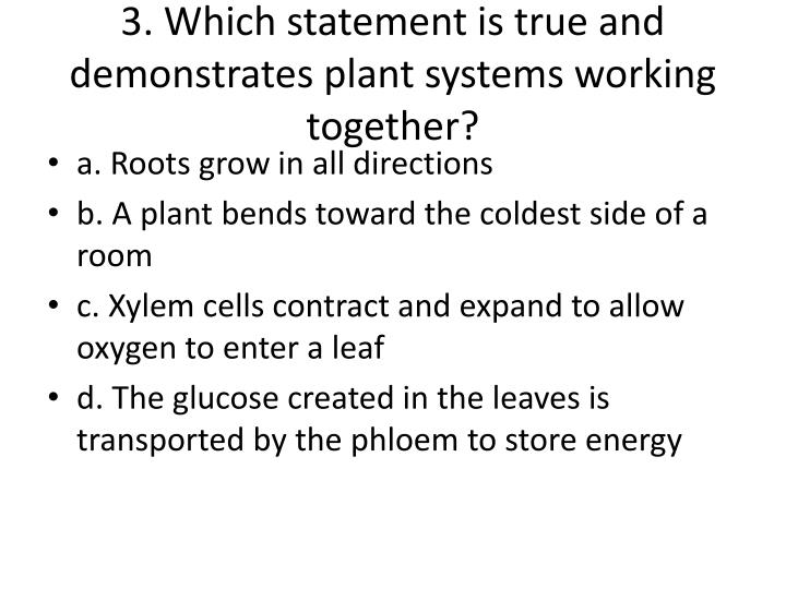 3. Which