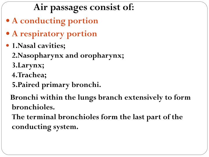 Air passages consist of