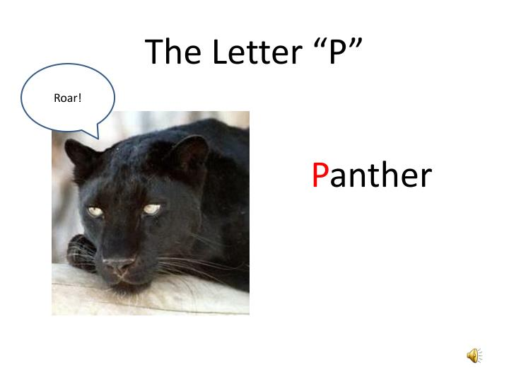"""The Letter """"P"""""""