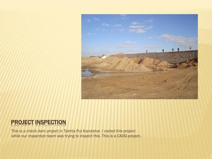 Project inspection