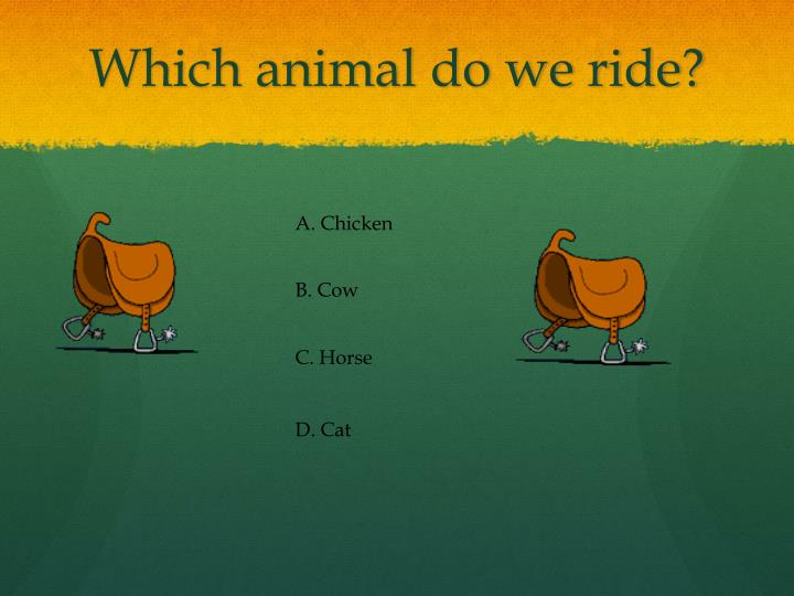 Which animal do we ride?