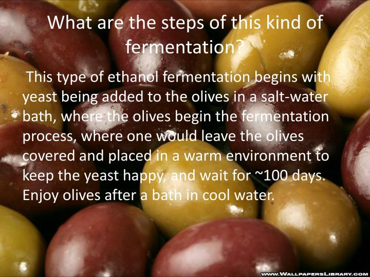 What are the steps of this kind of fermentation?