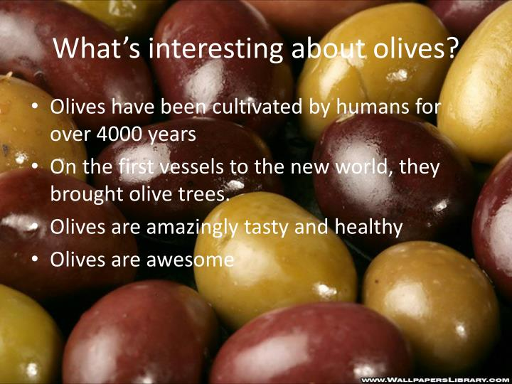 What's interesting about olives?