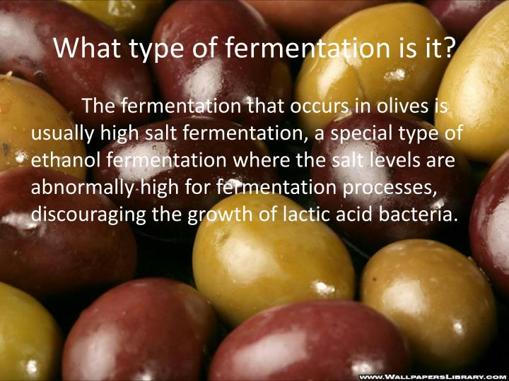 What type of fermentation is it?