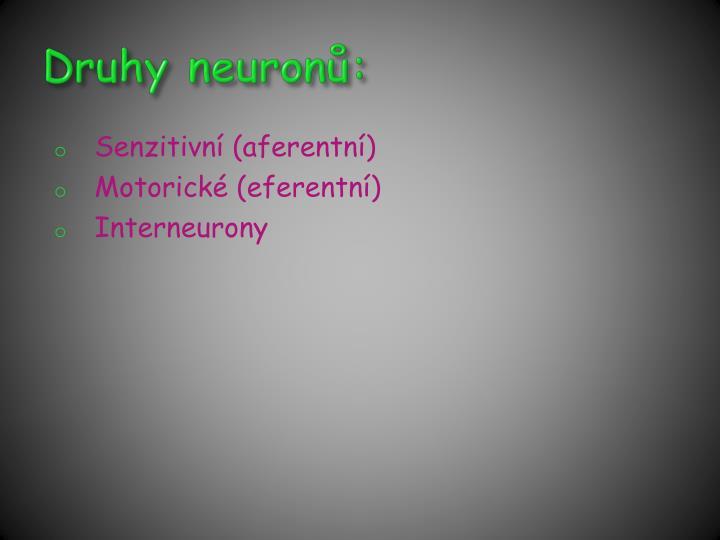 Druhy neuronů:
