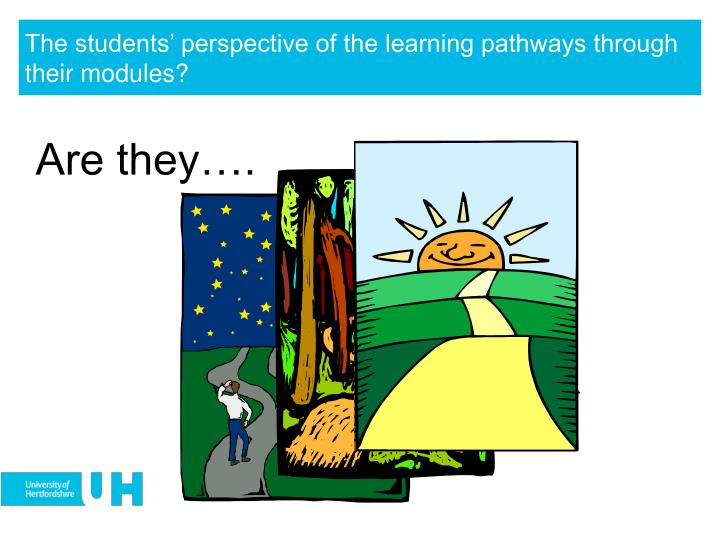 The students' perspective of the learning pathways through their modules?