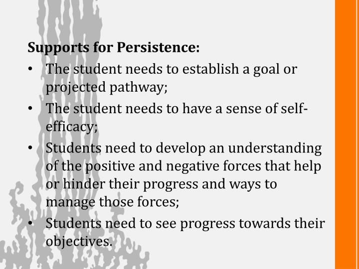Supports for Persistence: