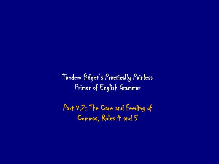 Tandem Fidget's Practically Painless