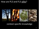 how are pl3 and fl3 alike