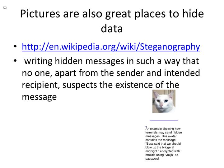 Pictures are also great places to hide data