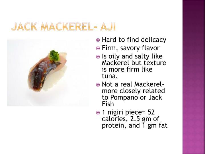Jack Mackerel-