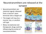 neurotransmitters are released at the synapse