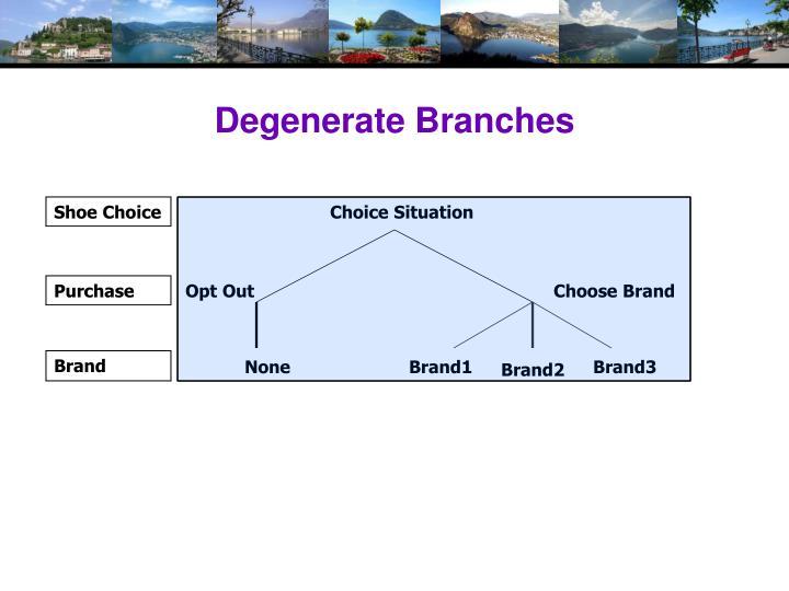 Degenerate Branches