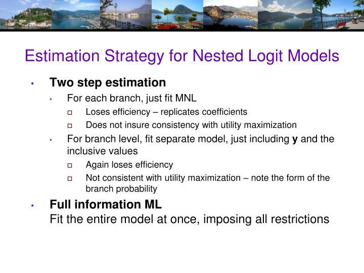 Estimation Strategy for Nested Logit Models