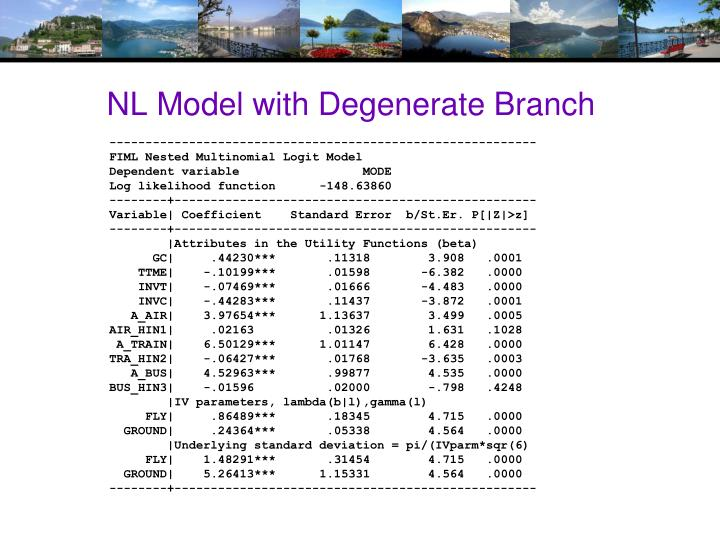 NL Model with Degenerate Branch