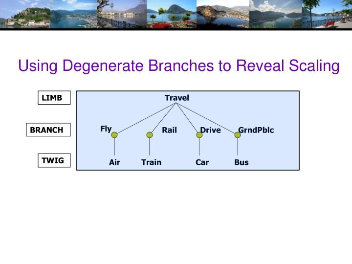 Using Degenerate Branches to Reveal Scaling