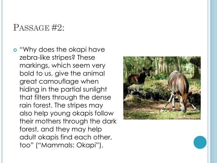 Passage #2: