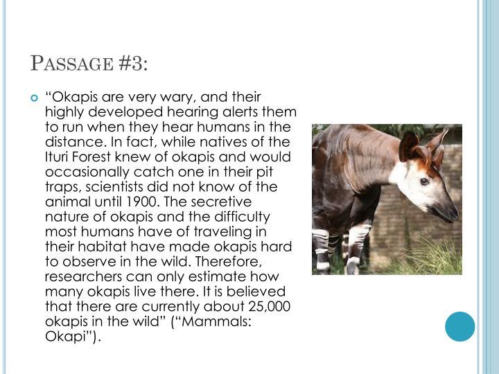 Passage #3: