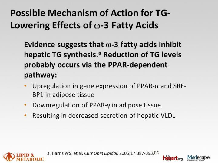 Possible Mechanism of Action for TG-Lowering Effects of