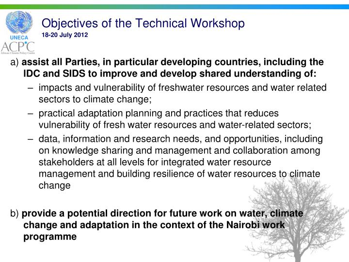 Objectives of the Technical Workshop