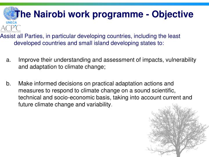 The nairobi work programme objective