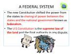 a federal system