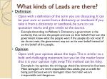 what kinds of leads are there2