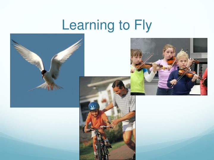 Learning to Fly
