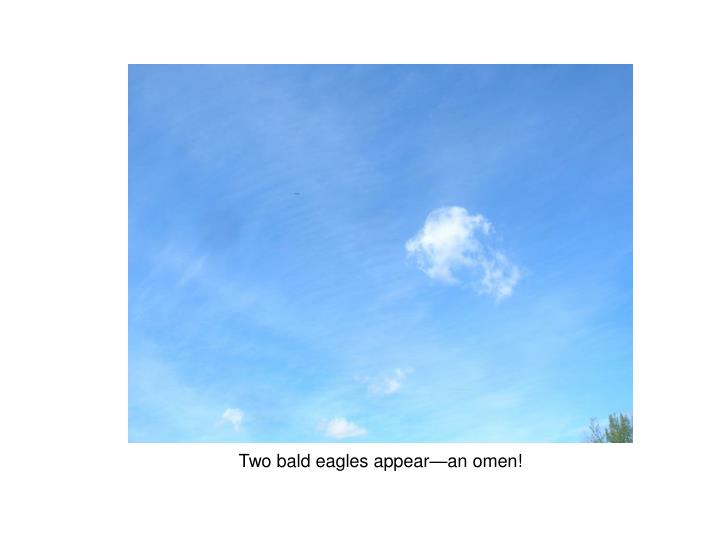 Two bald eagles appear—an omen!