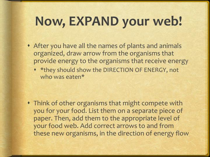 Now, EXPAND your web!
