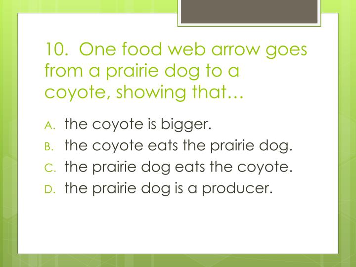 10.  One food web arrow goes from a prairie dog to a coyote, showing that…